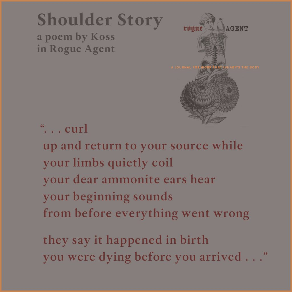 poetry publication promo for Shoulder Story in Rogue Agent