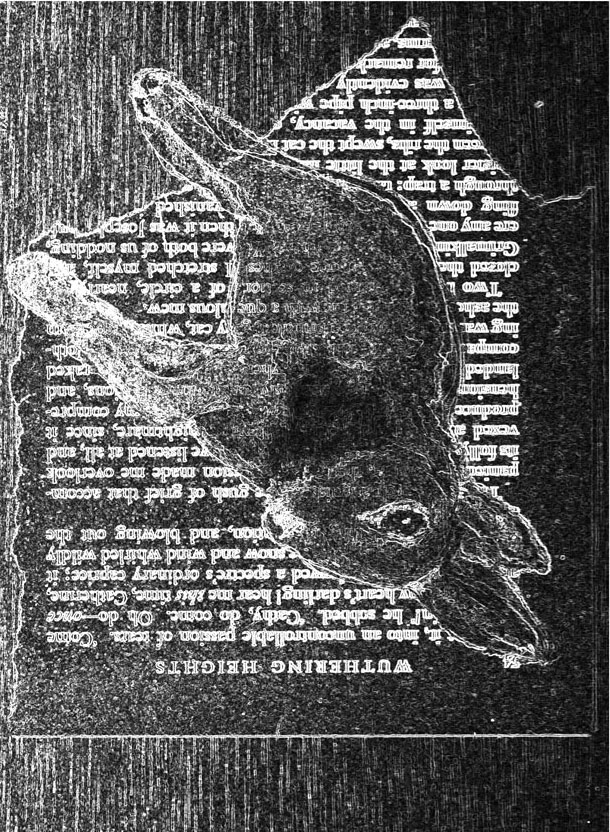 Hare Xerox Art with Wuthering Heights Text and Wood background